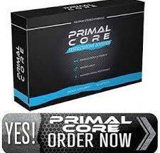 Primal Core