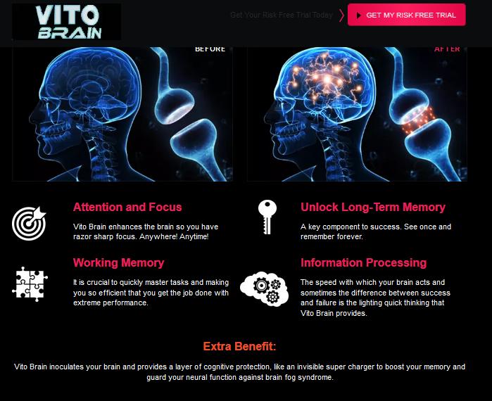 Vito Brain Reviews
