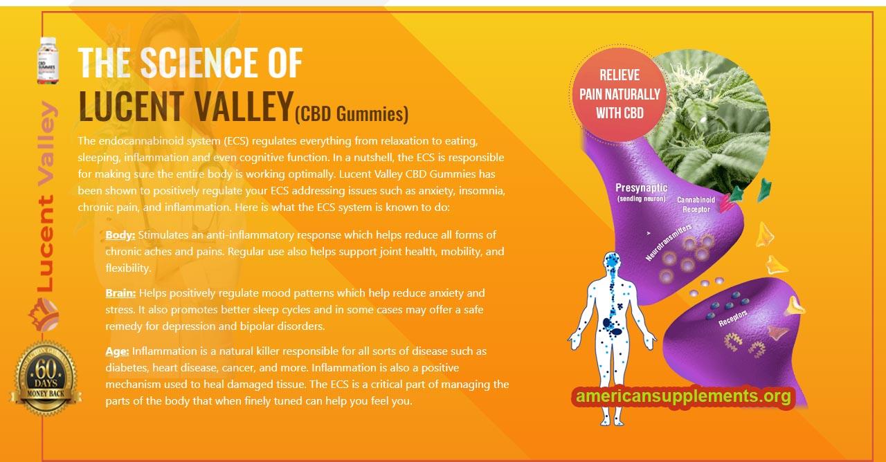 Lucent Valley CBD Gummies Review