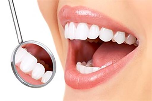 Steel Bite Pro Dental Supplement